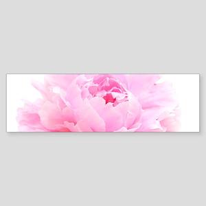 pink peony Bumper Sticker