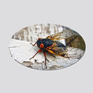 Red Eyed Cicada Wall Decal
