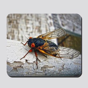 Red Eyed Cicada Mousepad