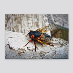 Red Eyed Cicada 5'x7'Area Rug