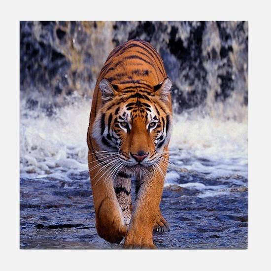 Tiger In Waterfall Tile Coaster