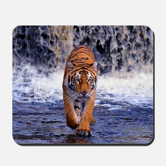 Tiger In Waterfall Mousepad