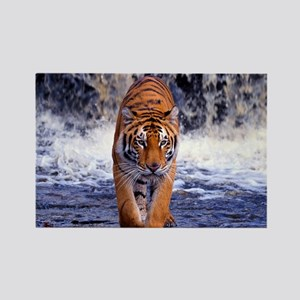 Tiger In Waterfall Magnets