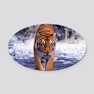 Tiger In Waterfall Oval Car Magnet