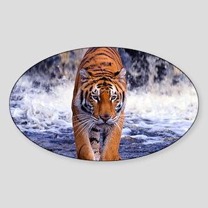 Tiger In Waterfall Sticker