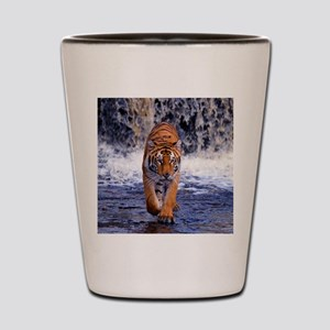 Tiger In Waterfall Shot Glass