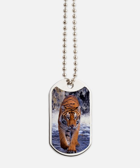 Tiger In Waterfall Dog Tags
