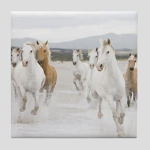 Horses Running On The Beach Tile Coaster