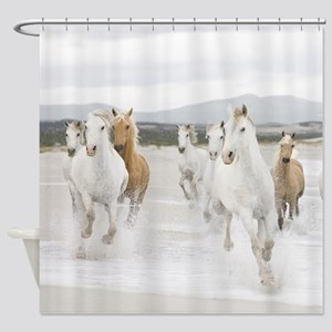 Horses Running On The Beach Shower Curtain