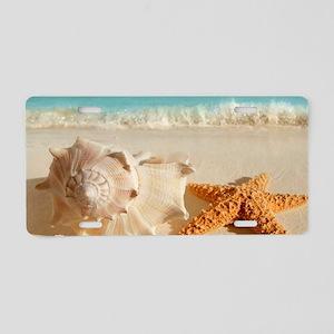 Seashell And Starfish On Beach Aluminum License Pl