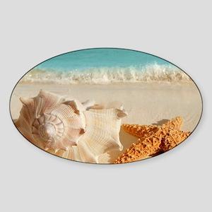 Seashell And Starfish On Beach Sticker