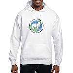 NABSSAR Hooded Sweatshirt