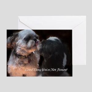 Shih Tzu Funny Greeting Card