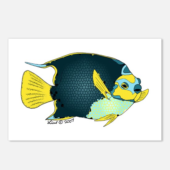 angelfish Postcards (Package of 8)