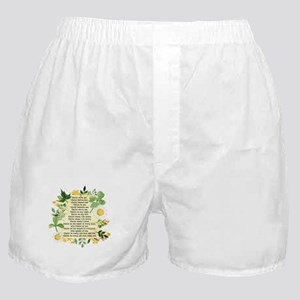 St. Patrick's Breastplate Boxer Shorts
