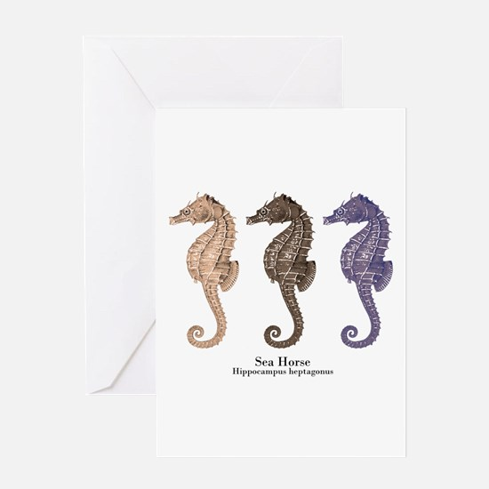 Sea Horse Vintage Art Greeting Card