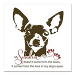 Chihuahua Dog My Sunshin Square Car Magnet 3