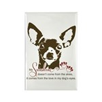 Chihuahua Dog My Sunsh Rectangle Magnet (100 pack)