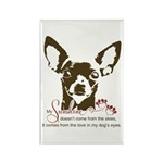 Chihuahua Dog My Sunshi Rectangle Magnet (10 pack)