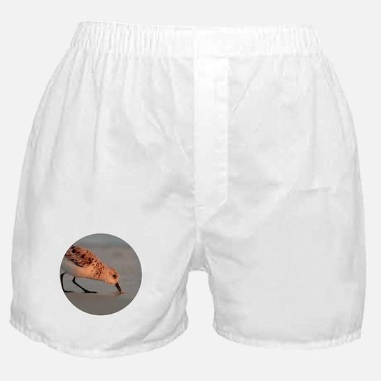 Sandpiper Boxer Shorts