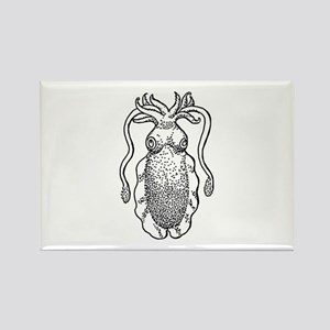 Cuttlefish Magnets