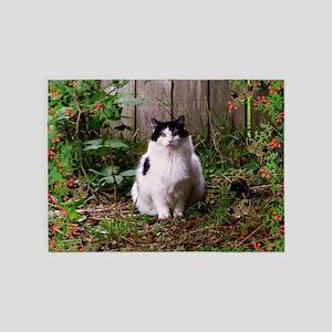 Fat Cat Art 5'x7'Area Rug