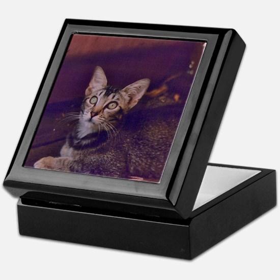 Unique Mysterious Keepsake Box