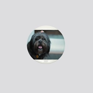 smiling lhasa type dog Mini Button