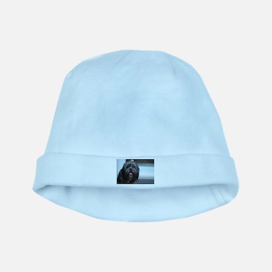 smiling lhasa type dog baby hat