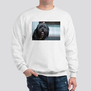smiling lhasa type dog Sweatshirt