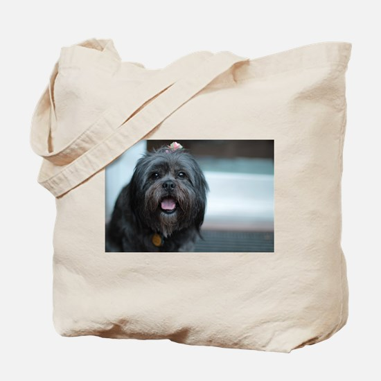 smiling lhasa type dog Tote Bag