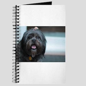 smiling lhasa type dog Journal