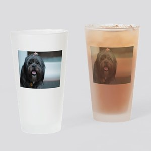 smiling lhasa type dog Drinking Glass