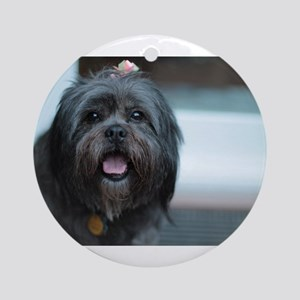 smiling lhasa type dog Round Ornament