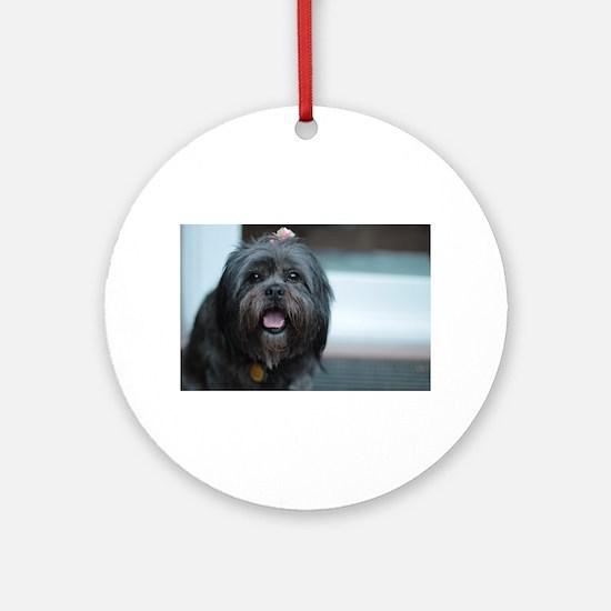smiling lhasa type dog Round Ornament