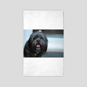 smiling lhasa type dog Area Rug