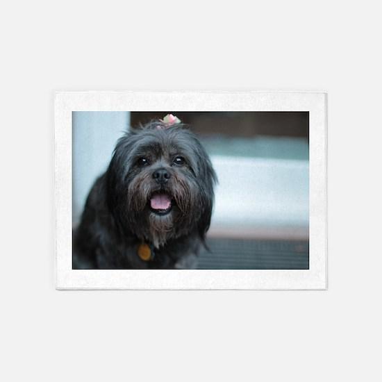 smiling lhasa type dog 5'x7'Area Rug