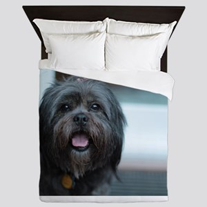 smiling lhasa type dog Queen Duvet