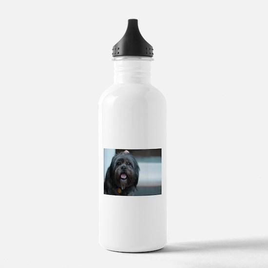 smiling lhasa type dog Water Bottle