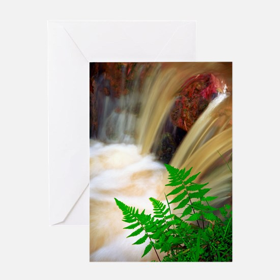 Ferrous thermal water Greeting Cards