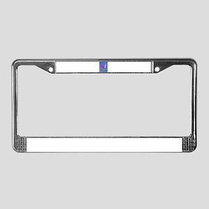 Blue Gray License Plate Frame