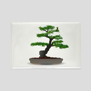 Bonsai tree Magnets