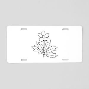 anemone canadensis Aluminum License Plate