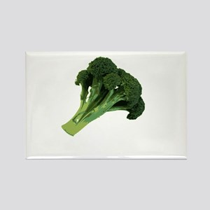 Broccoli Magnets