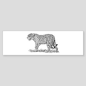 Jaguar silhouette Bumper Sticker