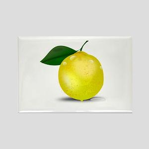 Lemon photorealistic Magnets