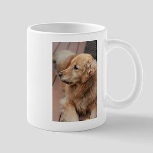 golden retriever serious Mugs