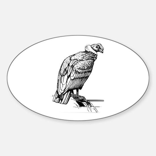 Condor Decal