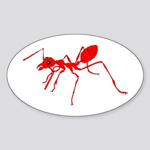 Red ant Sticker