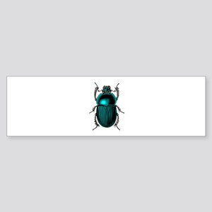 Beetle Bug Bumper Sticker